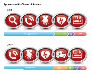 American Heart Association. Web-based Integrated Guidelines for Cardiopulmonary Resuscitation and Emergency Cardiovascular Care – Part 7: Adult Advanced Cardiovascular Life Support. ECCguidelines.heart.org