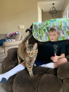 Remote learning with your pet!