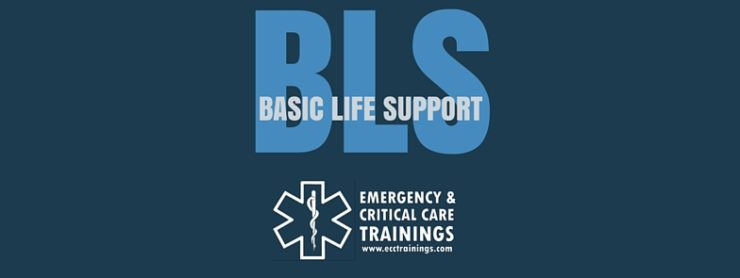 Curso de CPR -- BLS certification in Puerto Rico