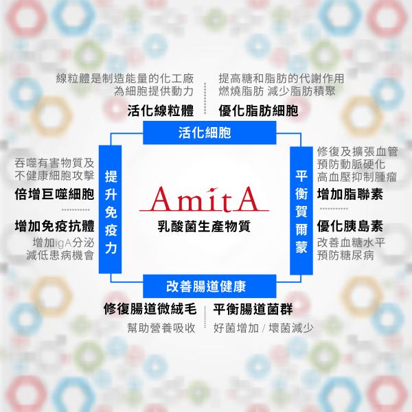 AmitA 乳酸菌生產物質功效