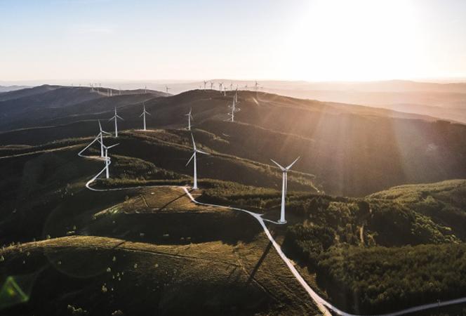 Parque eólico visto desde el cielo
