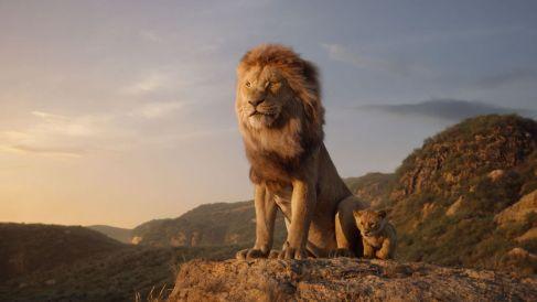 El gesto purificador del león en Yoga es Simhasana