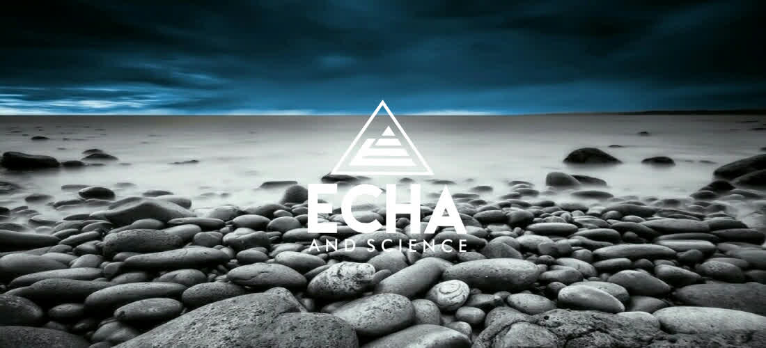 Celebrating One Year of Echa and Science