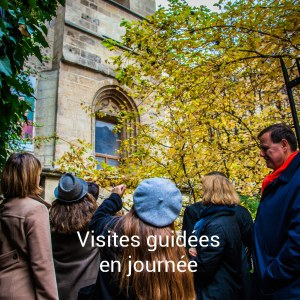Visite guidée dans Paris