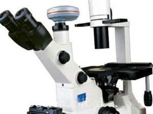 Microscope inversé XD-202