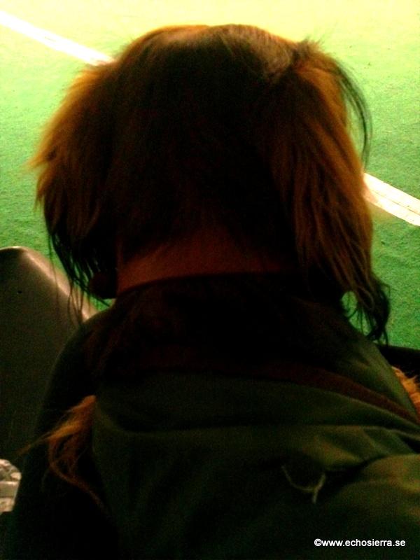 Alf på kurs