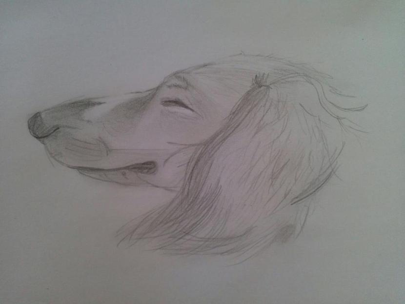 teckning