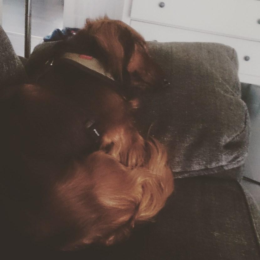 Sovande Theo