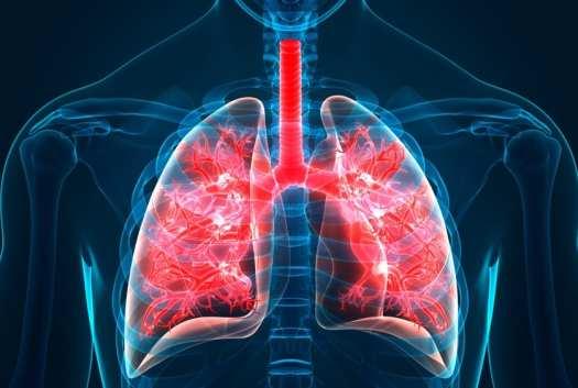 lungs and vaping