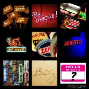 Blog Branding Blog Name EclecticEvelyn.com