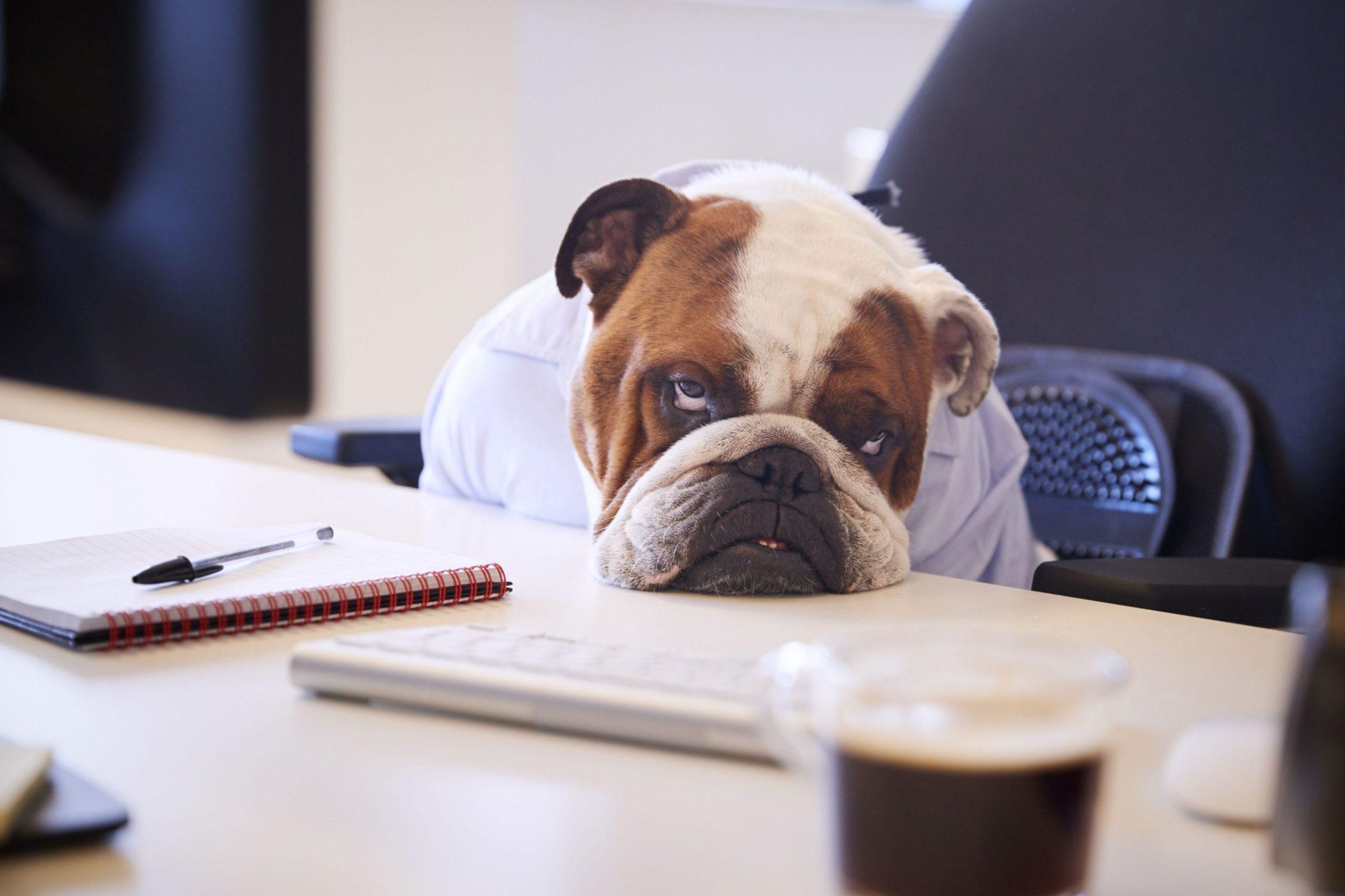EMG Blog - Managing Burnout