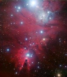 5 NGC 2264 and the Christmas Tree cluster (120 x 104,9 cm) €251,68