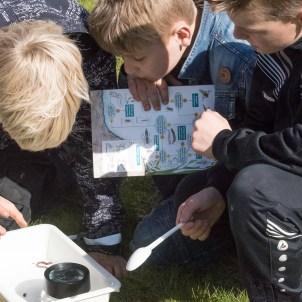 Workshop insectenhotel bouwen