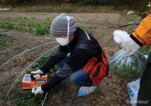 Fukushima 3 ans après : partir, revenir?