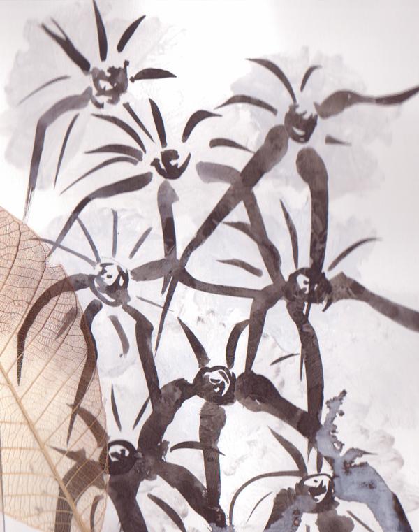 les-plantes-dépolluantes