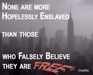 29a Free- Goethe copy