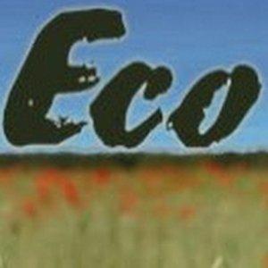 eco-house Naturbaustoffe Energiesparen Regenwasser Solar Kamine