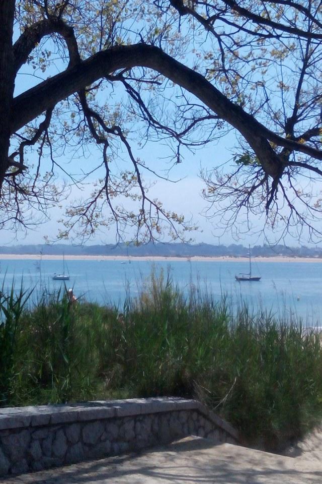 Uitzicht-op-strand