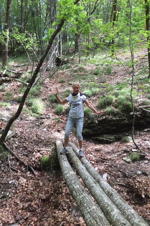 Verena op boomstammen