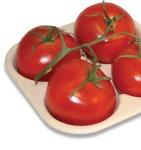 ckf-tomato