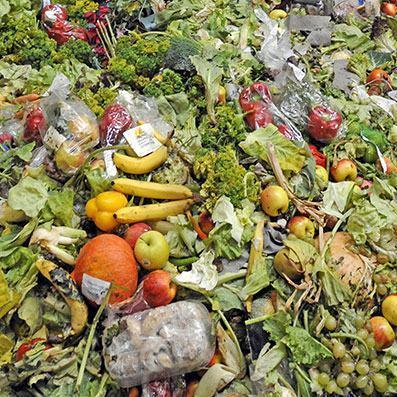 desperdício de comida