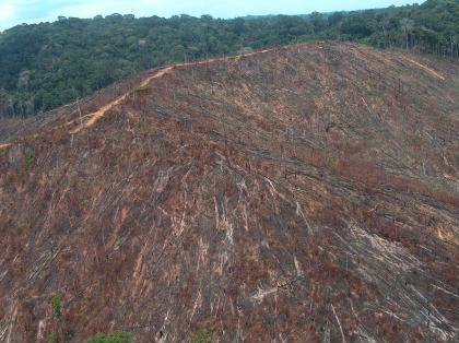 Desmatamento em área de encosta. Foto de arquivo MMA