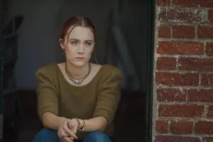 Lady Bird Box Office USA