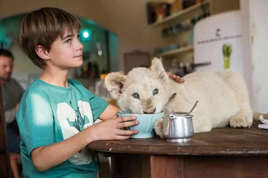 Mia e il leone bianco scena film