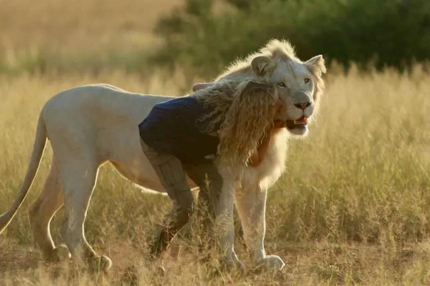 Mia e il leone bianco review