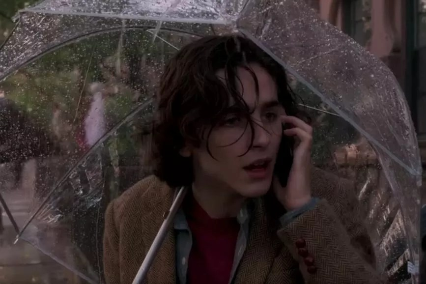 Un giorno di pioggia a New York Chalamet
