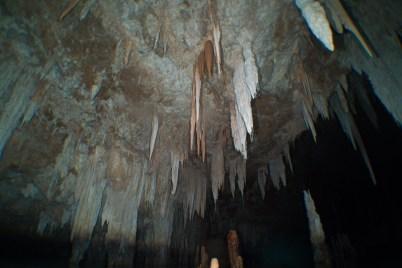 Elephant cave Stalactites