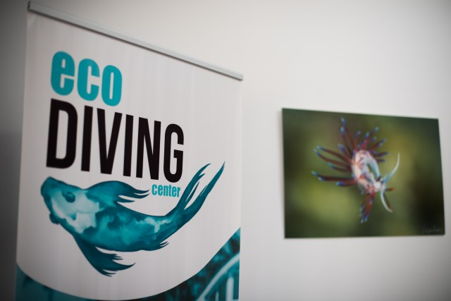 Eco Diving Center interior