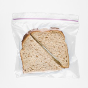 Plastic sandwich bag can become plastic in the sea