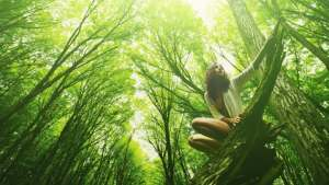 forest bathing to relax and de-stress