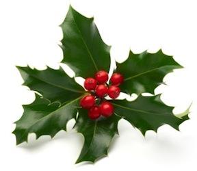 Eco Friendly Christmas eco friendly christmas ideas - ecofriendlylink