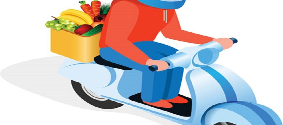 grocery delivery online business