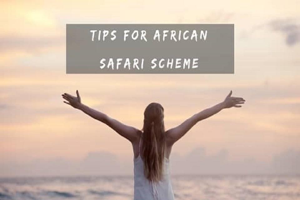 african safari scheme