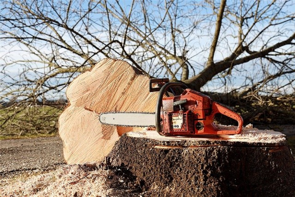 chainsaws different