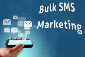 Bulk SMS vs SMS