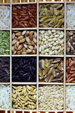 Seed bank |Rice seed diversity via Wikipedia