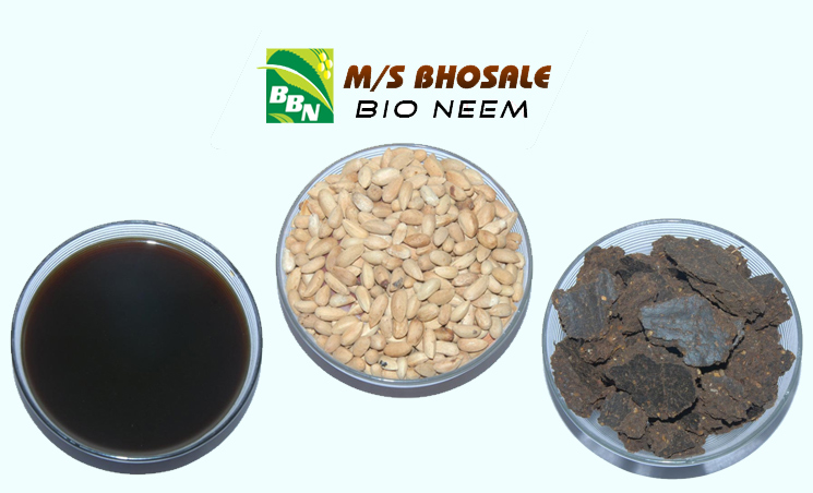 Eco-friendly-Company-in-India-Bhosale-Bio-Neem