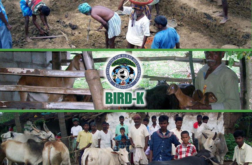 eco-friendly-companies-in-India-BAIF-Institute-for-Rural-Development-Karnataka-(BIRD-K)