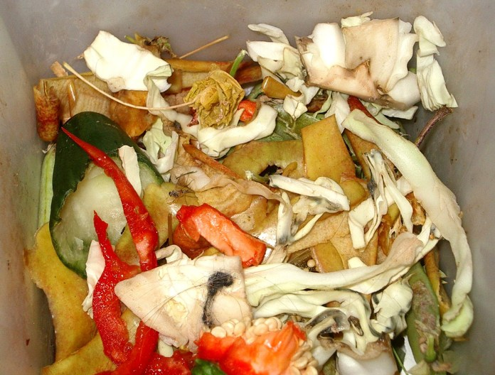 Organic-waste-to-wealth