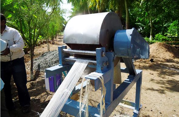 banana-fiber-extraction