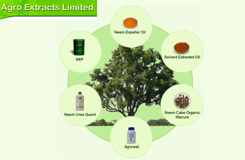 Agro Extracts Limited