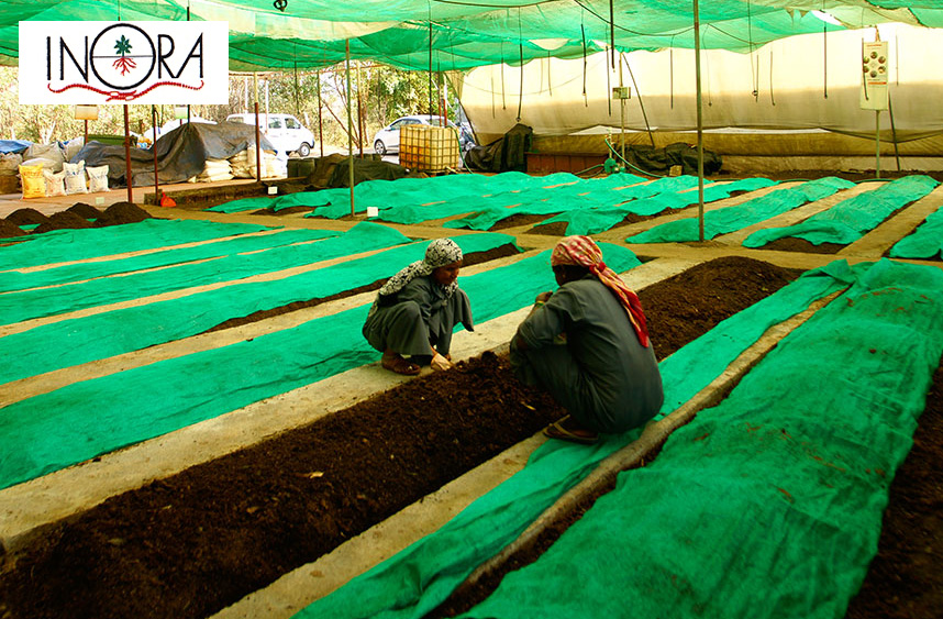 INORA-Institute-of-Natural-Organic-Agriculture
