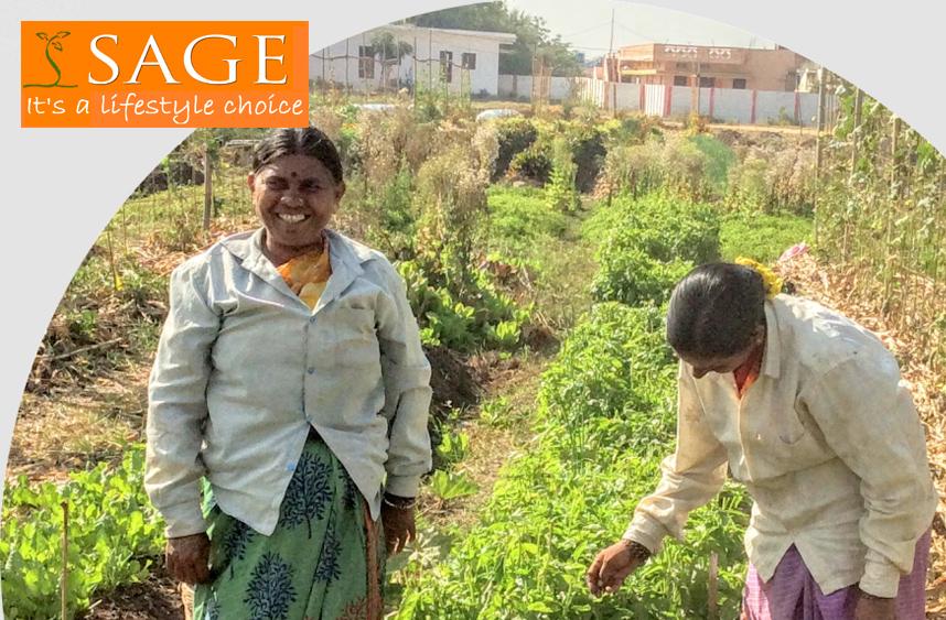 Sage-Organics