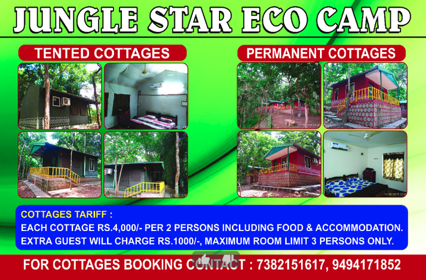 Jungle Star Eco Camp