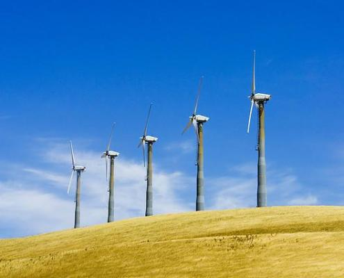 Cutting Business Energy Costs