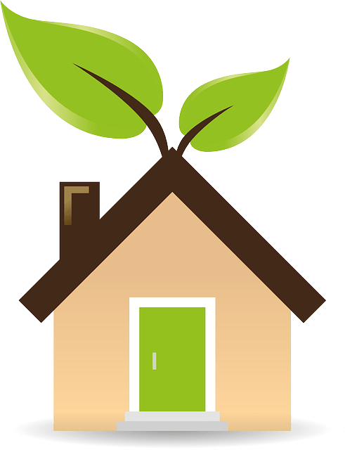 ways for a greener home and work life
